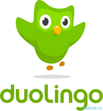 Duolingo. Учи языки 3.90.1 бесплатно