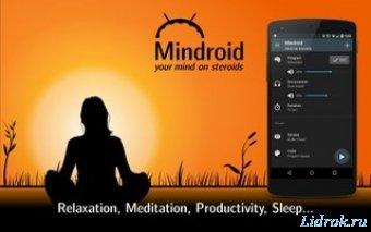 Mindroid Pro v4.0 [Ru/En]
