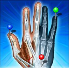e-Anatomy v4.12.4 Premium Ru [Android] бесплатно