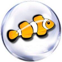 Marine Aquarium v3.3.21 PRO apk [Ru\En] бесплатно
