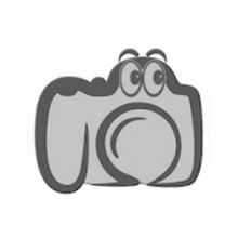 Photographer's companion