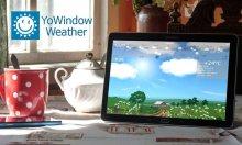 Погода YoWindow v2.26.10 apk [Ru]
