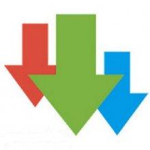 Advanced Download Manager and Torrent downloader